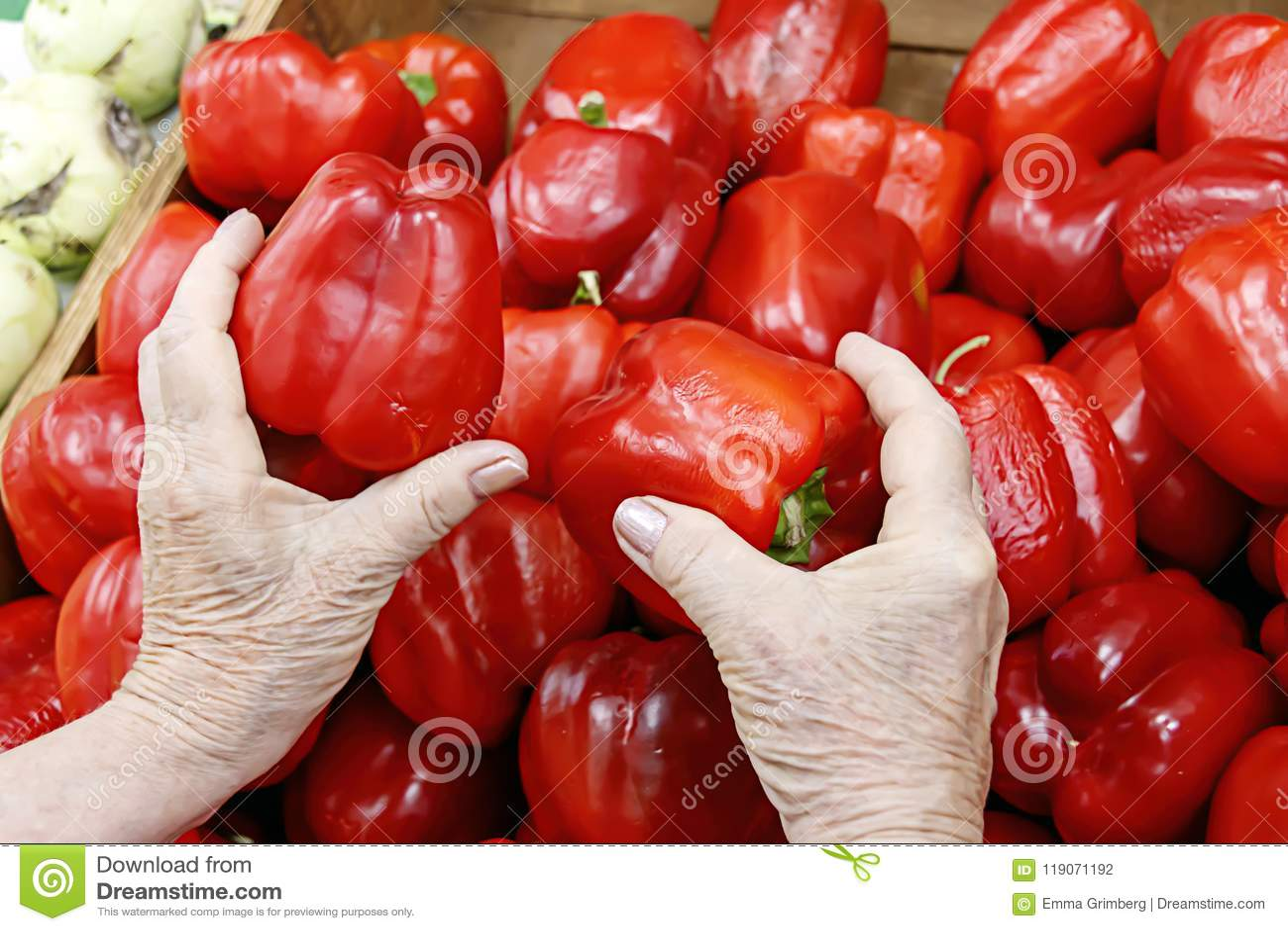 Hands of an elderly woman choosing a red pepper