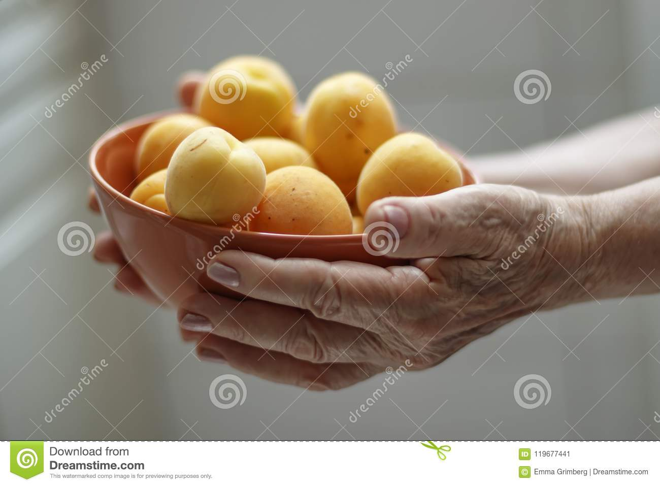 Hands of an elderly woman holding a bowl with apricots