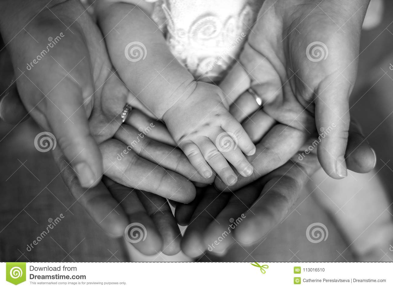 Hands of father, mother, keep little feet baby. Friendly happy family, hands families together black and white photo