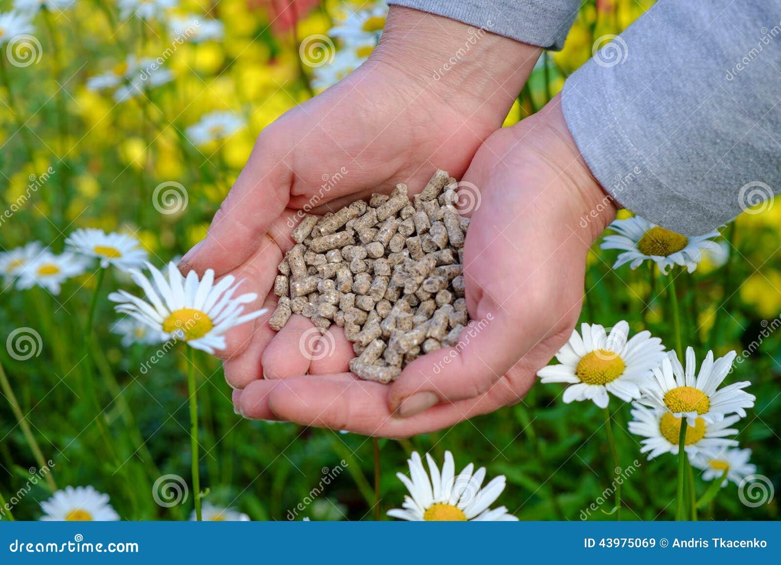 Hands with fertilizer