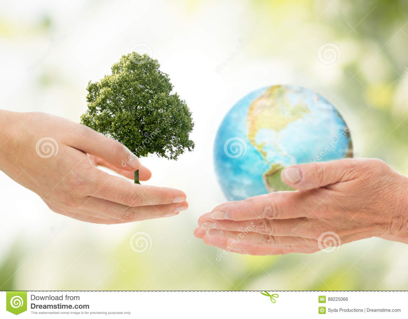 Hands holding green oak tree and earth planet