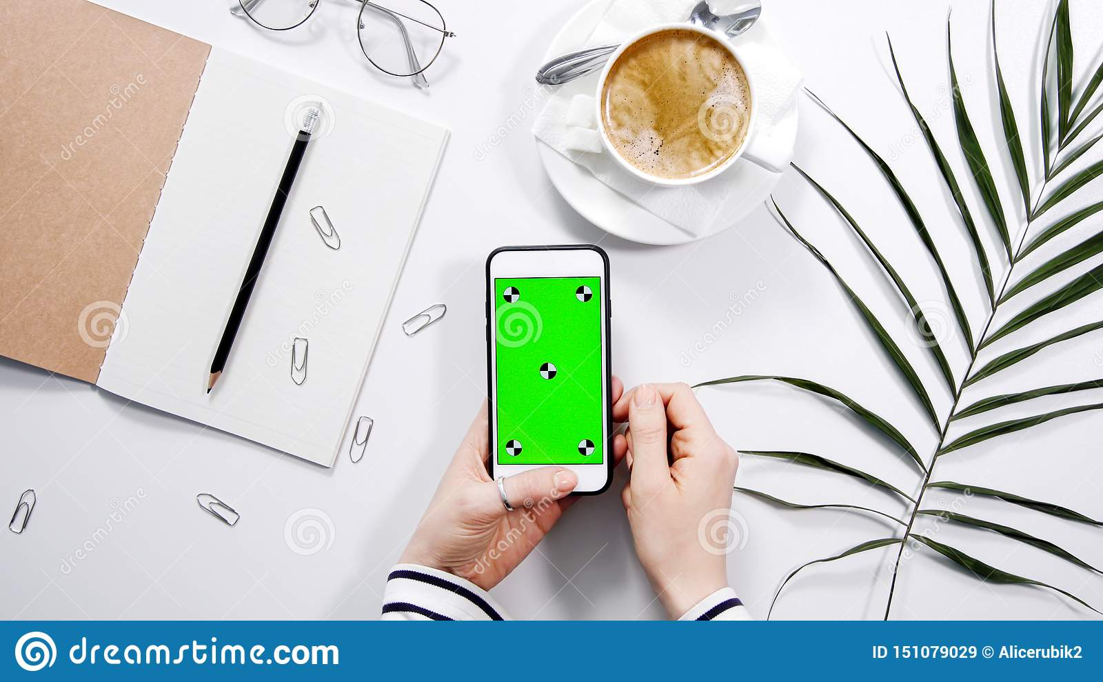 Hands holding a phone with a green screen. White background. Minimalism. Palm. Coffee break. Office look.