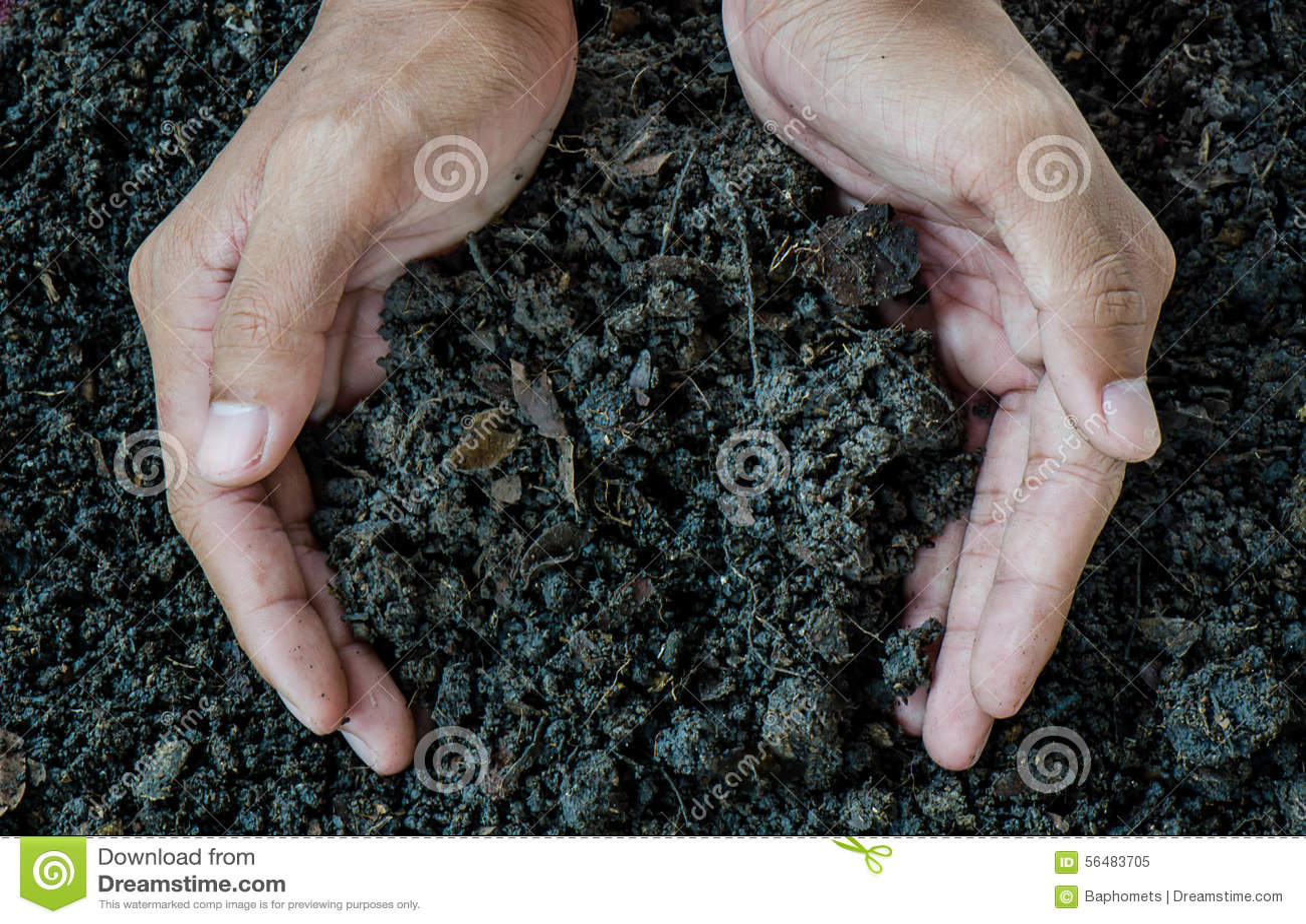 Hands holding soil, Organic fertilizer