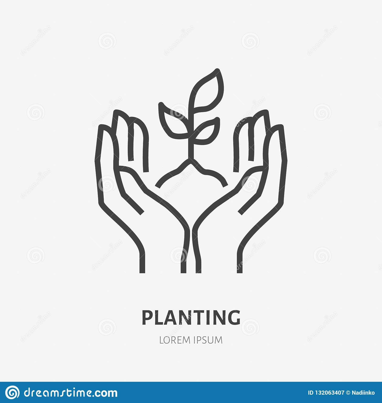 Hands holding soil with plant flat line icon. Vector thin sign of environment protection, ecology concept logo
