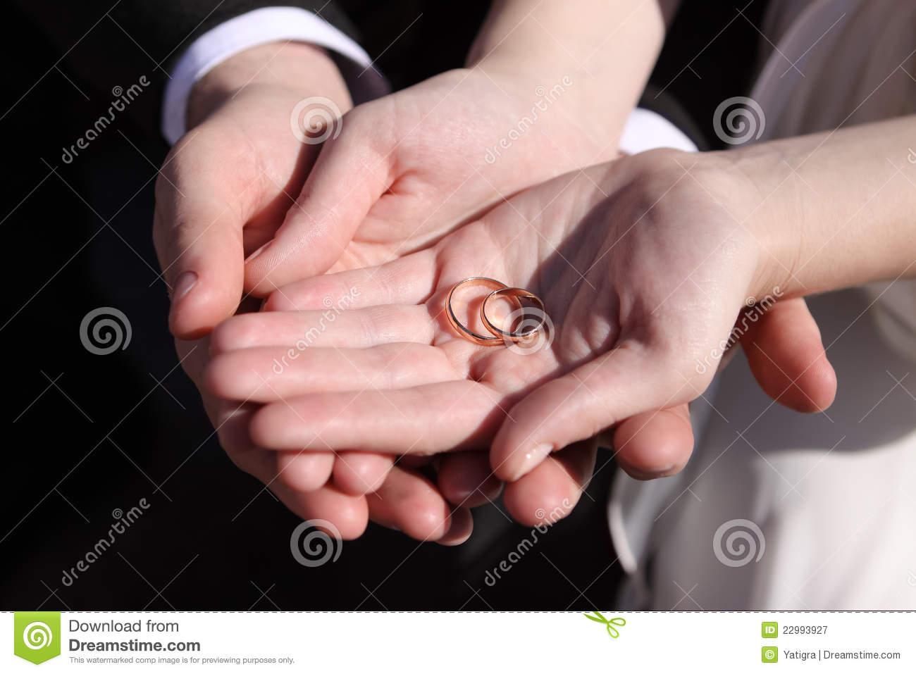 Hands Of The Newlyweds With Wedding Rings Stock Image - Image of ...