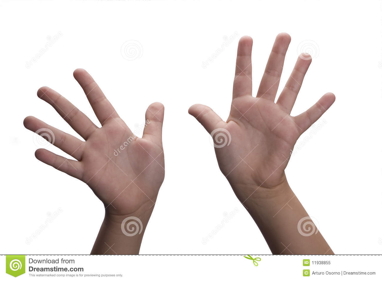 Hands Open Royalty Free Stock Photo - Image: 11938855