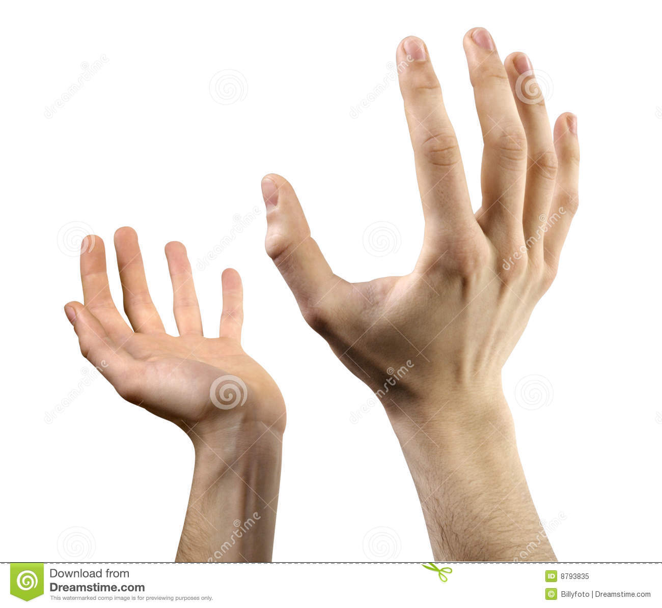 hands open stock image  image of fingers  palms  holding