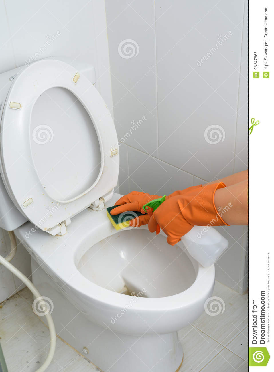 Hands In Orange Gloves Cleaning WC, Toilet, Lavatory Stock Image ...