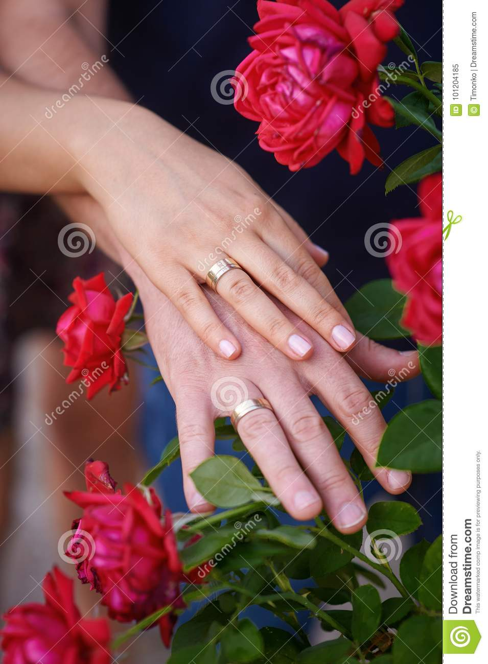 Hands Together With Wedding Rings On Red Roses Stock Image - Image ...