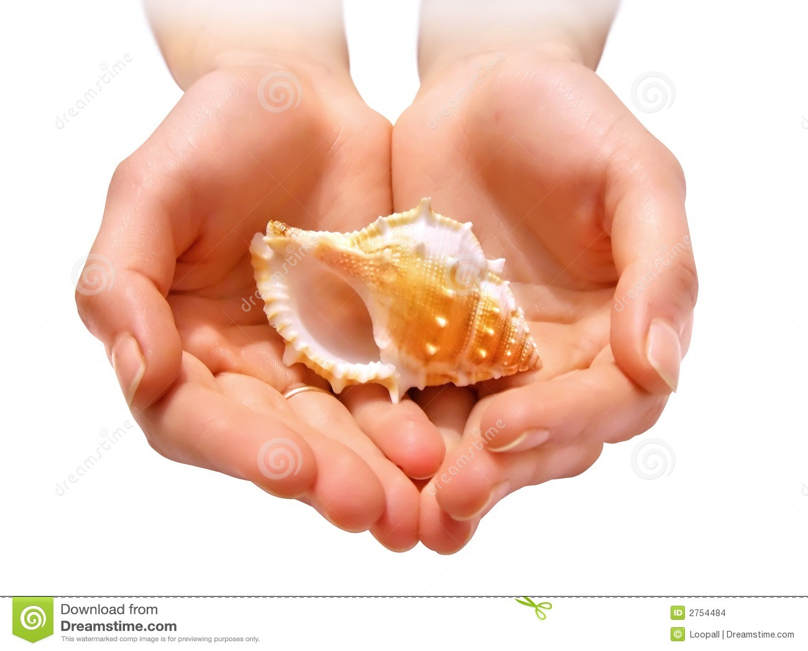 Handskal