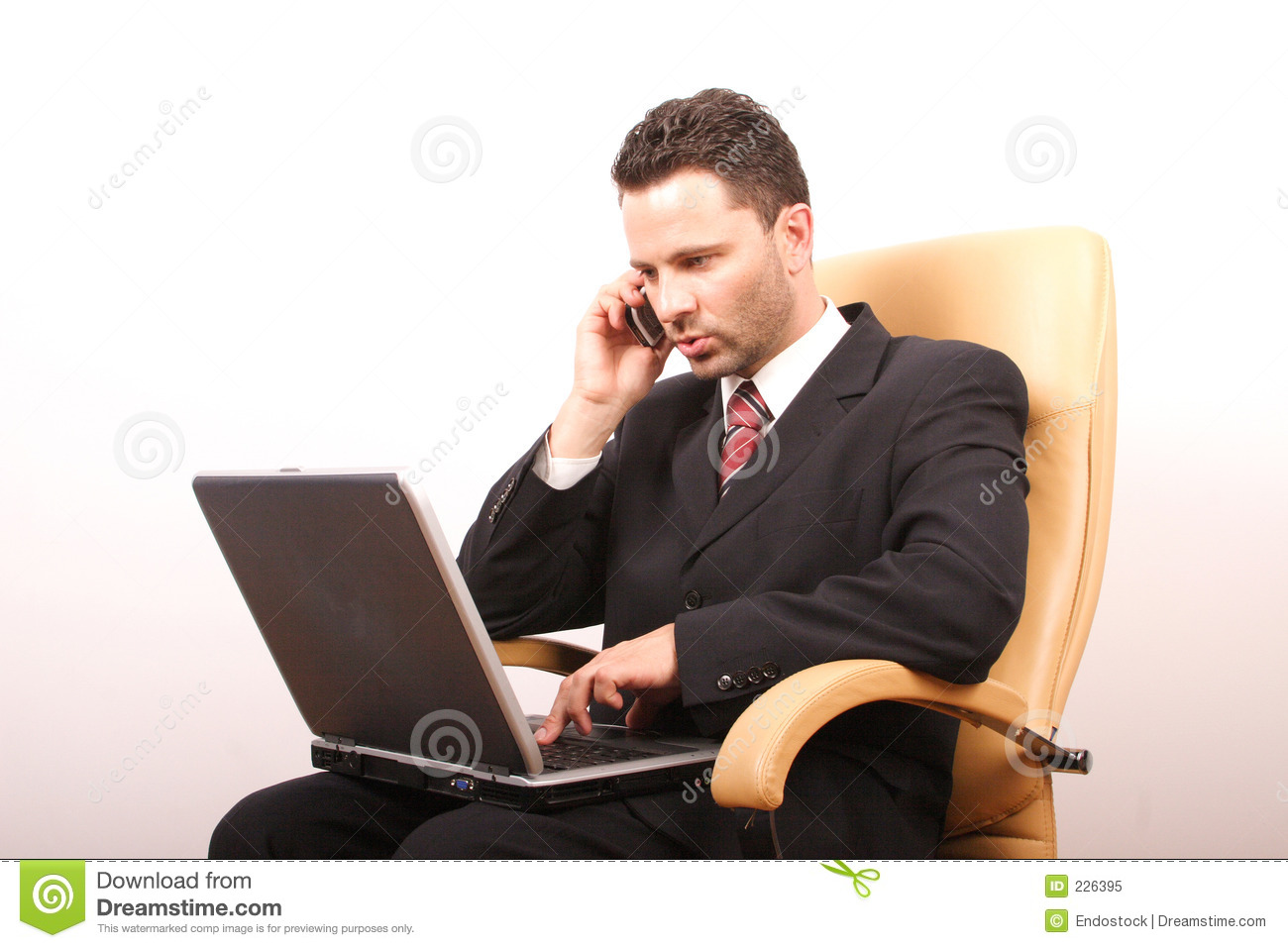 Handsome Calling Businessman With Laptop 2 Royalty Free
