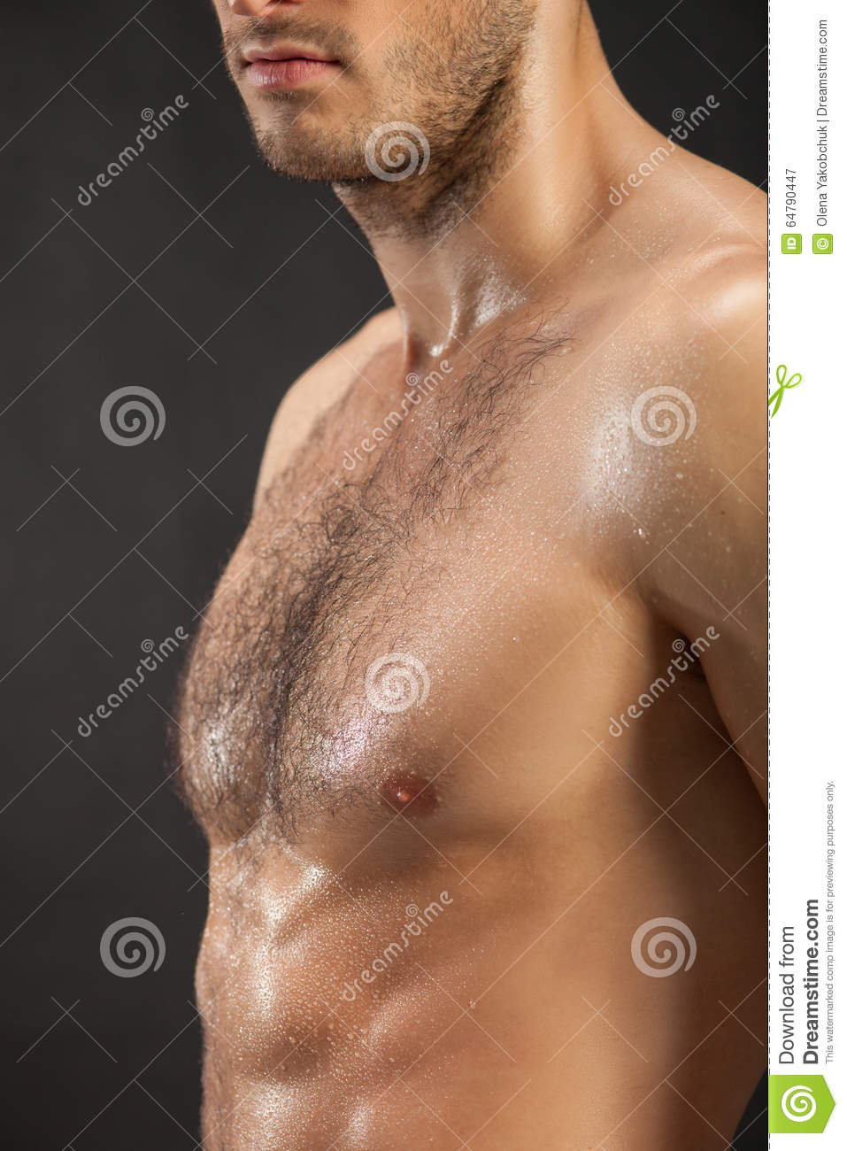 9438526a905d Close up of male trained naked torso. The young man is standing and sweating  with desire. Isolated