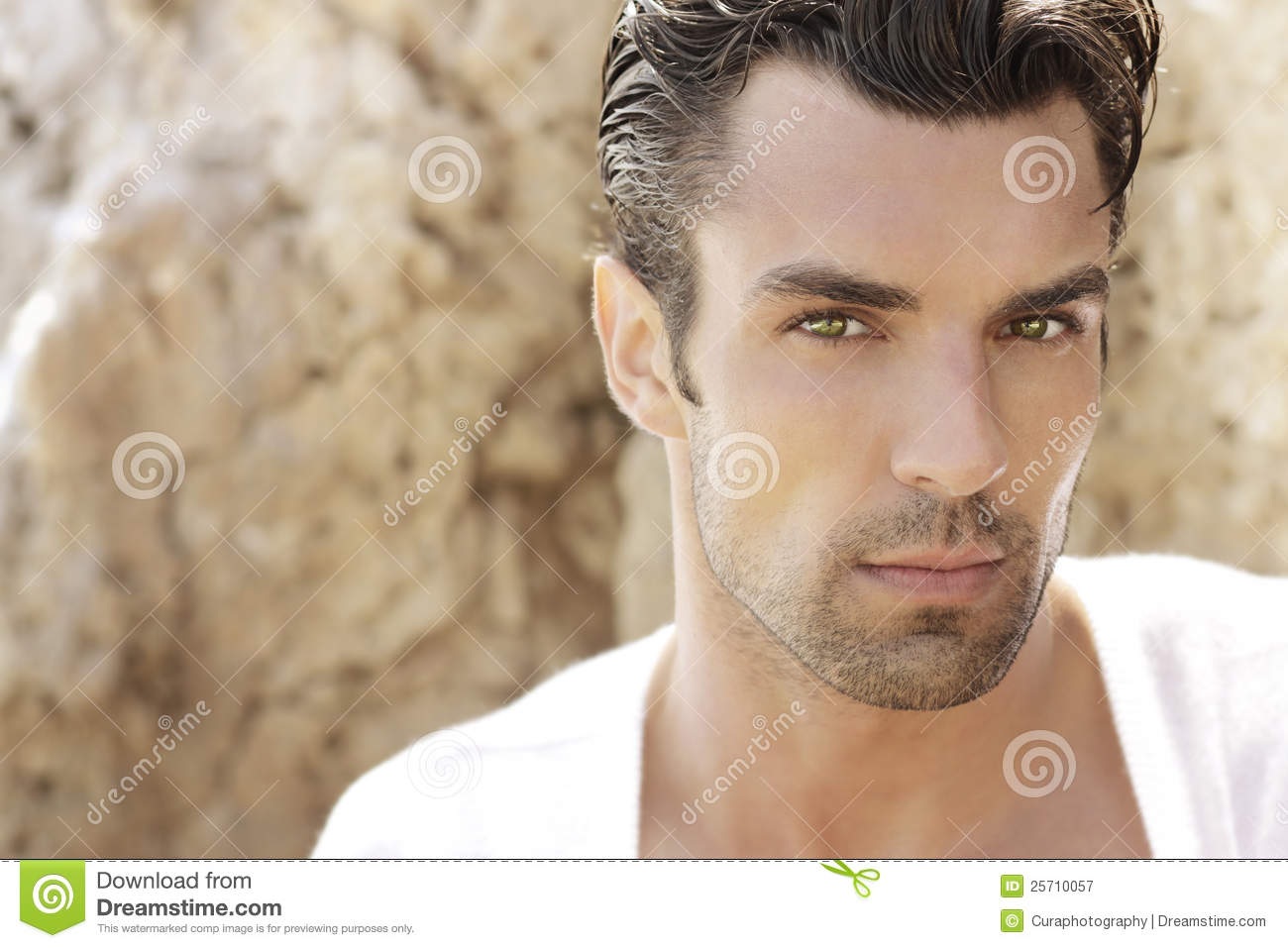 Handsome Male Model Royalty Free Stock Photography Image