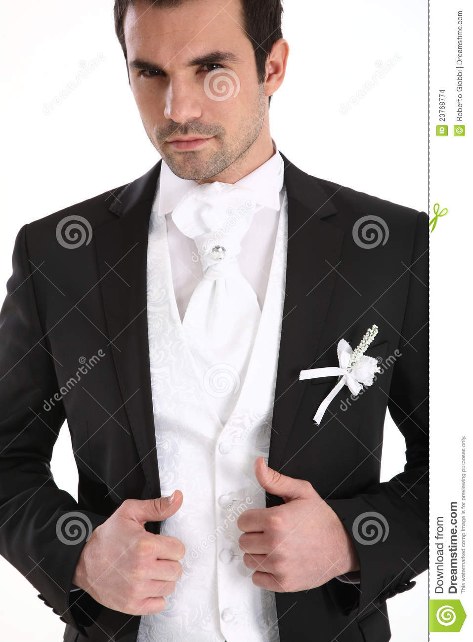 Handsome Man In Tuxedo Stock Images - Image: 23768774