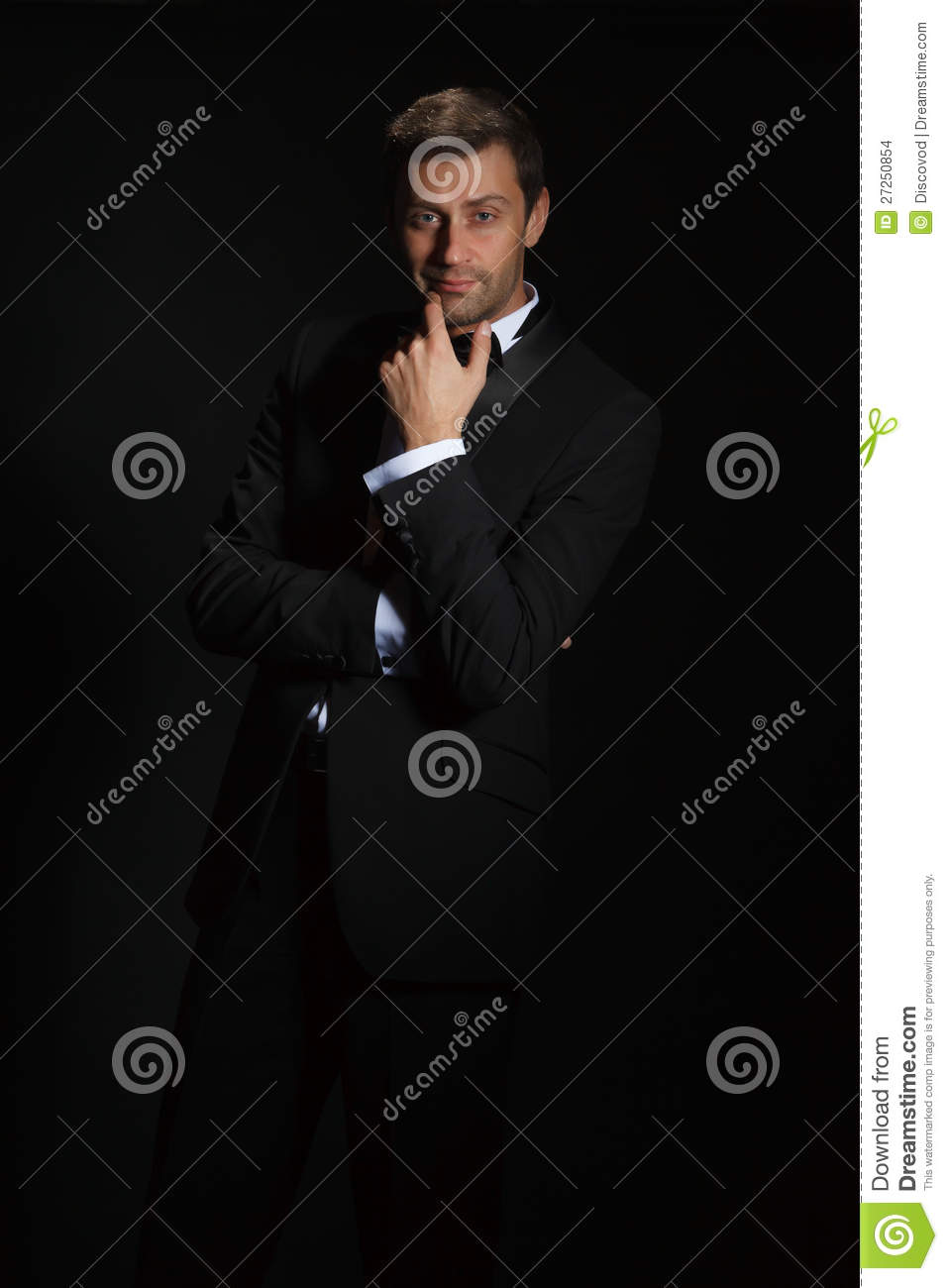Handsome Man In A Tuxedo Stock Images - Image: 27250854