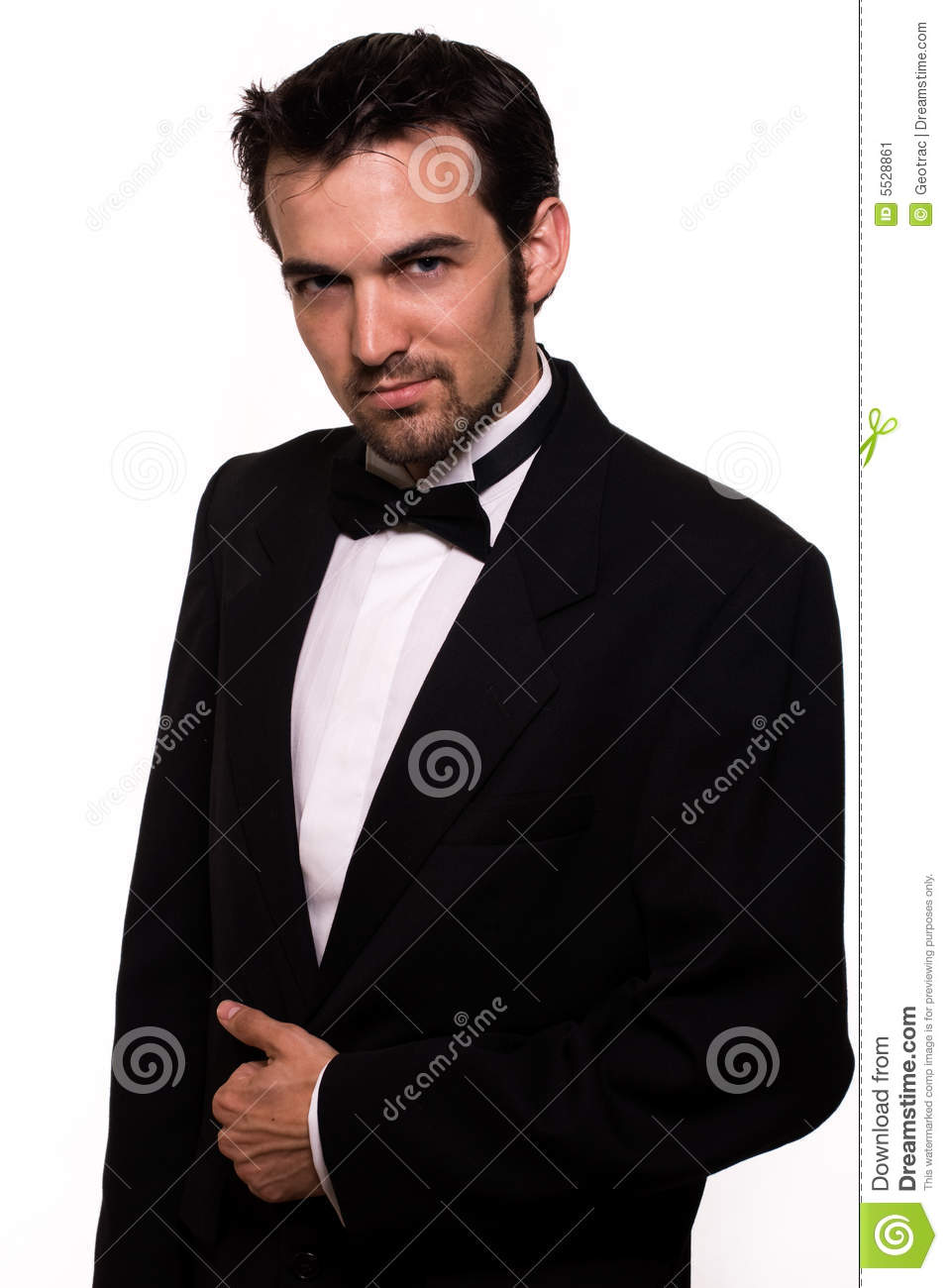 Handsome Man In Tuxedo Stock Image - Image: 5528861