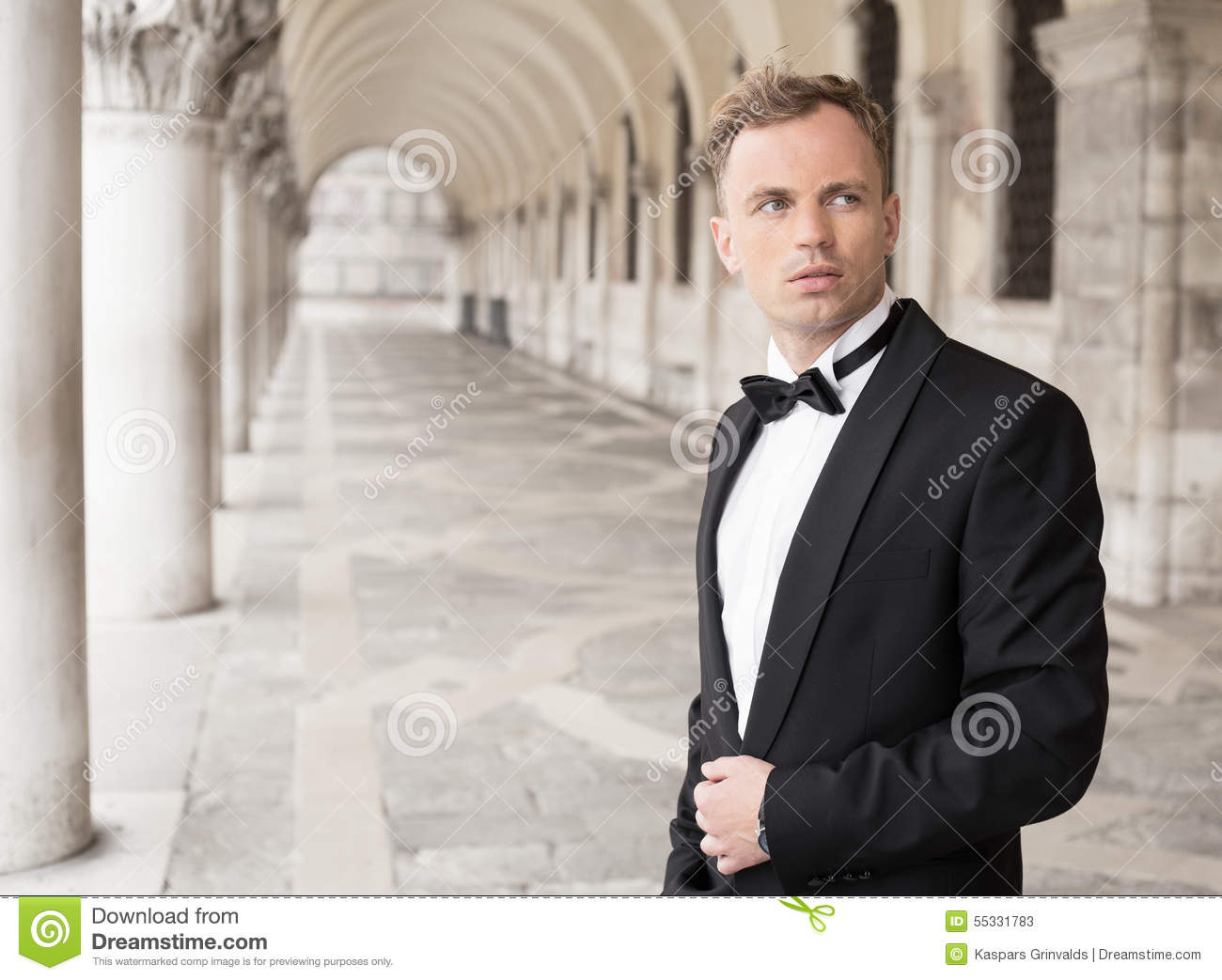 Handsome Man In Tuxedo Stock Photo - Image: 55331783