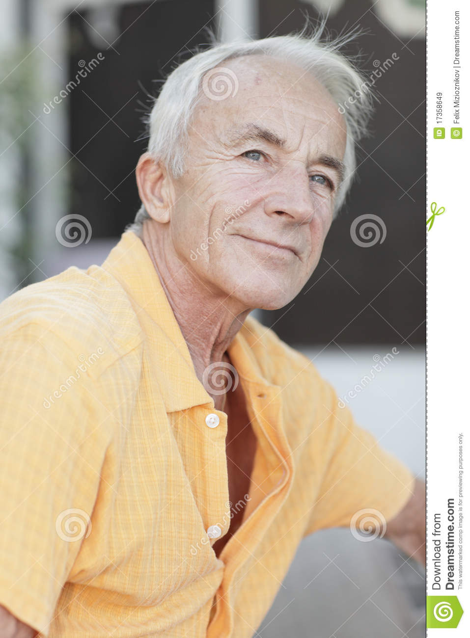Handsome Old Man Royalty Free Stock Images Image 17358649