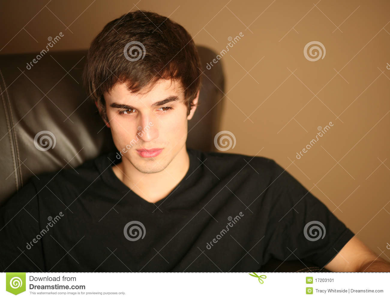 Handsome Young Male Model Stock Image Image Of Concept 17203101