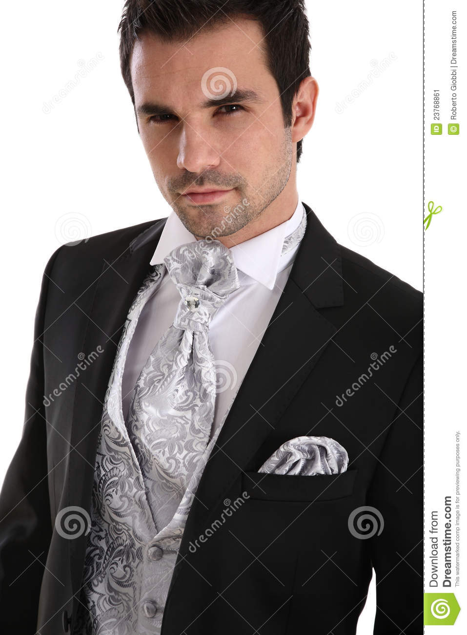 Handsome Young Man In Tuxedo Stock Image - Image: 23768861