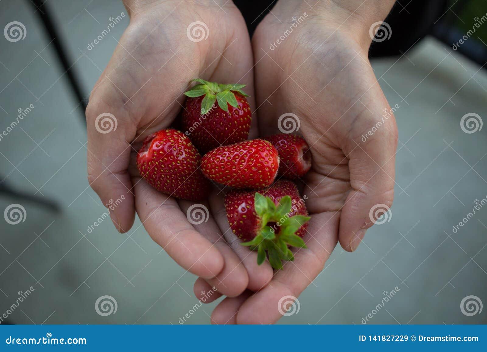 Handvol schone organische aardbeien op een concreet terras