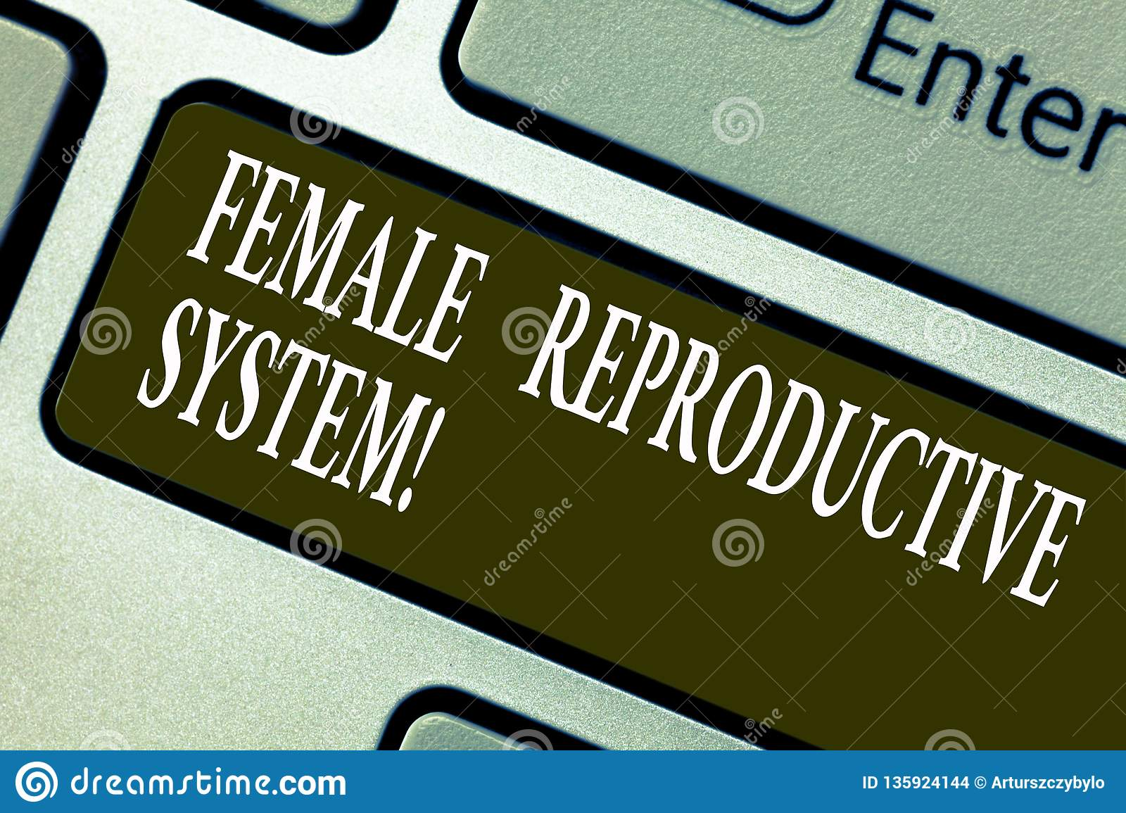 Handwriting text writing Female Reproductive System. Concept meaning responsible in reproduction of new offspring