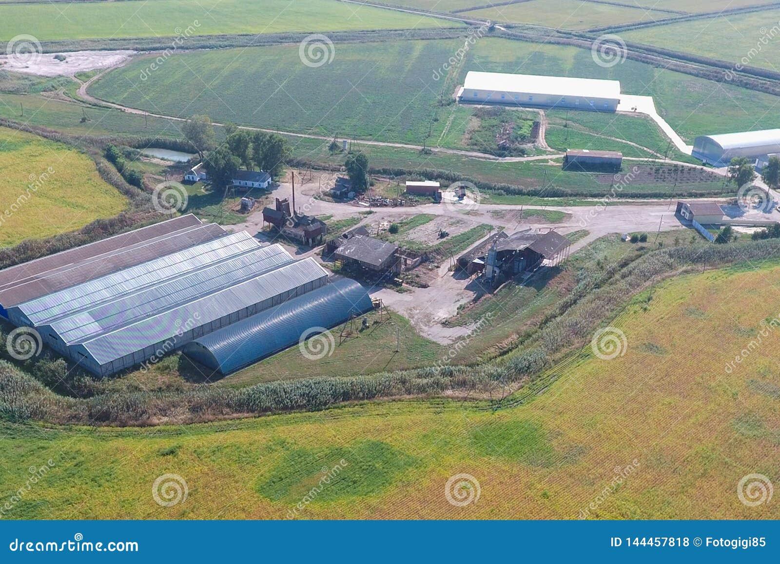 Hangar de folhas de metal galvanizadas para o armazenamento dos produtos agrícolas
