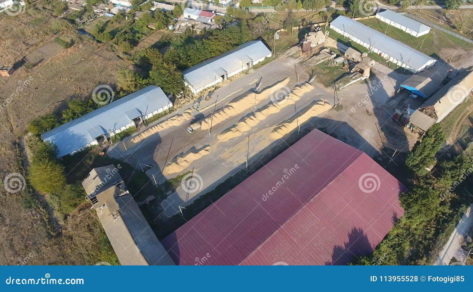Hangar dla magazynu adra Platforma dla suszyć i sintering adry Zbierająca adra
