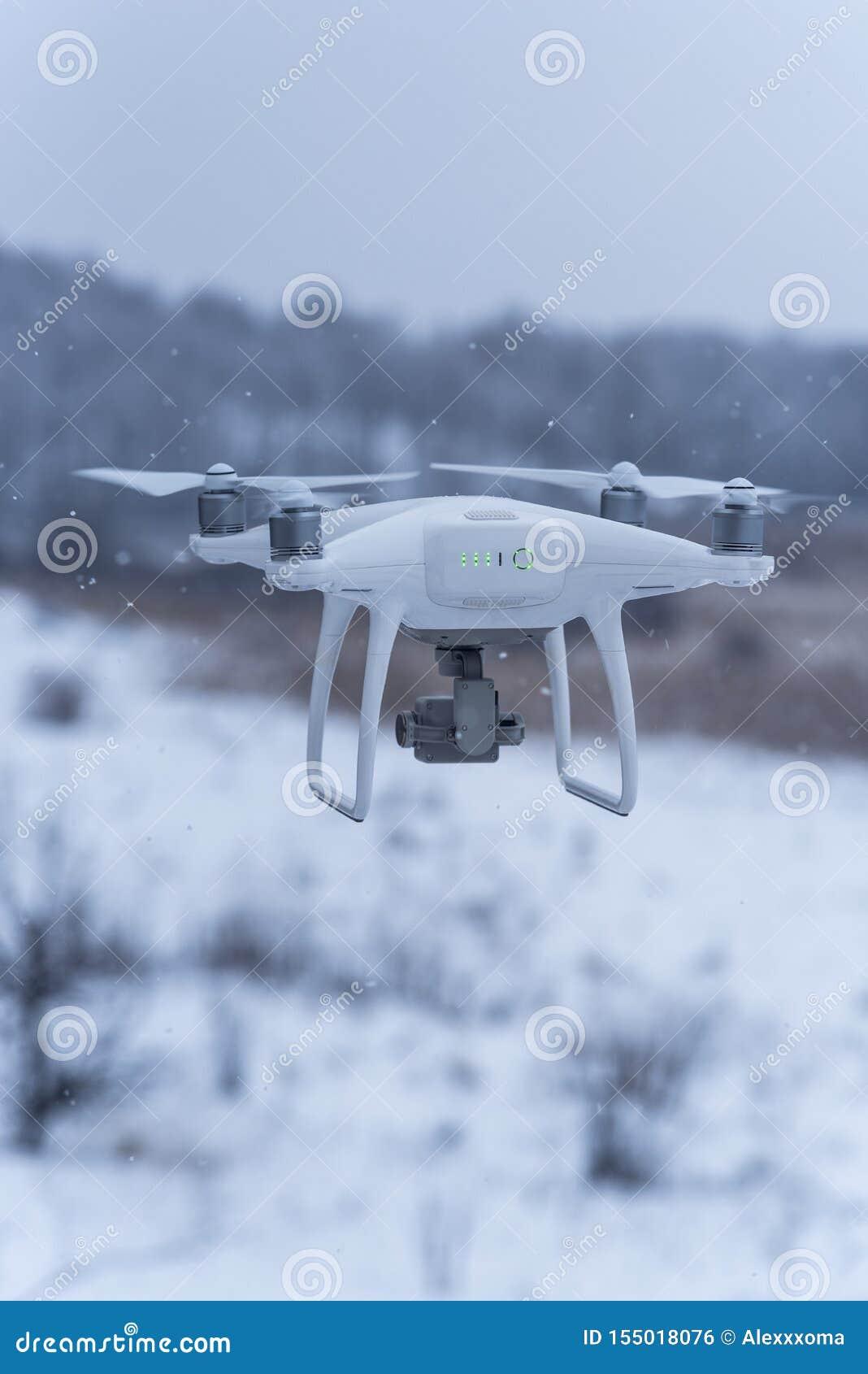 Hangende hommel die beelden van wilde aard nemen Koud de winterweer Bewolkte dag met dalende sneeuw