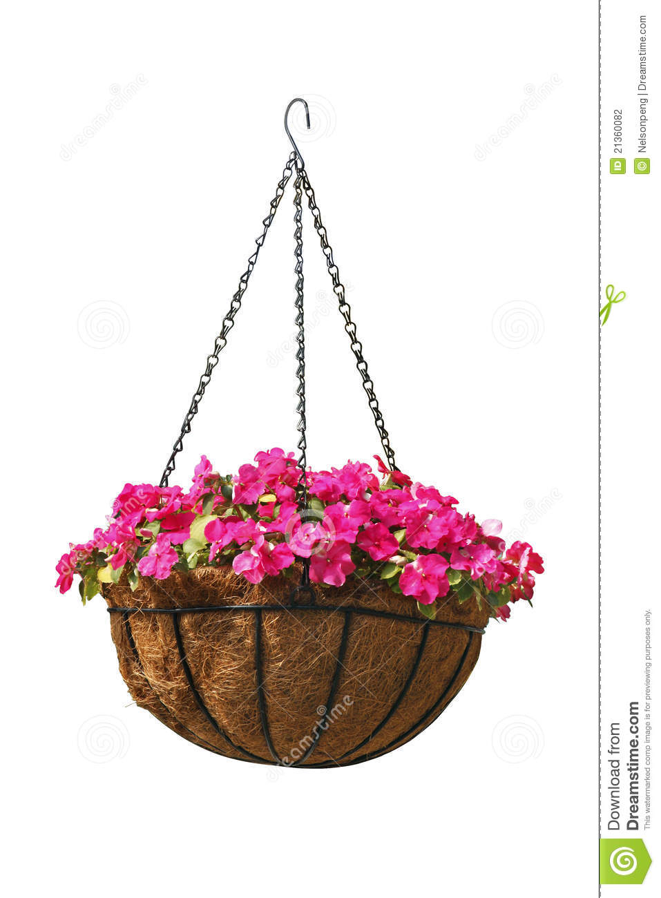 Hanging Basket Of Beautiful Flowers Stock Photography