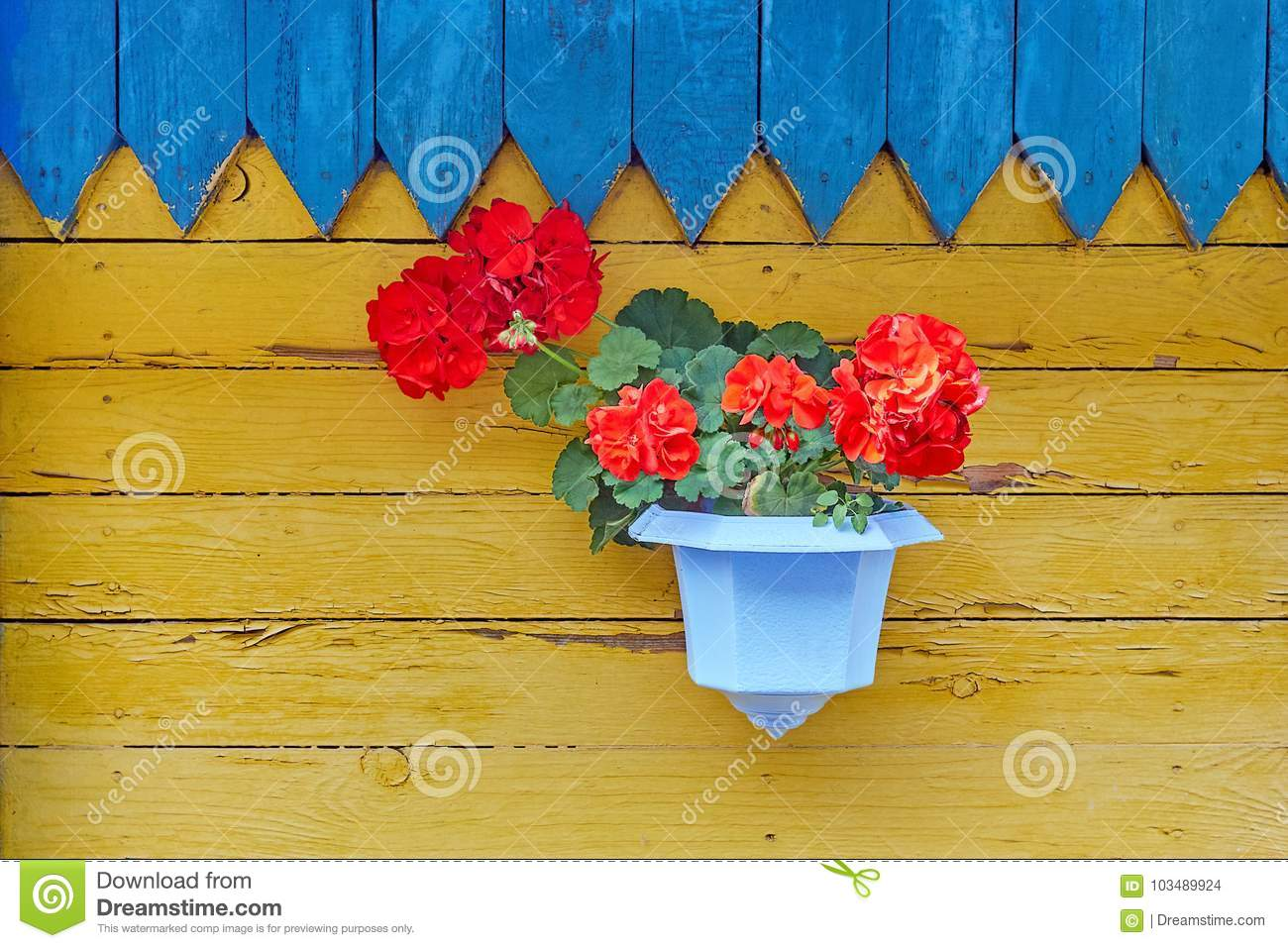 Hanging Basket With Flower Plants On The Wooden Wall Stock Photo ...