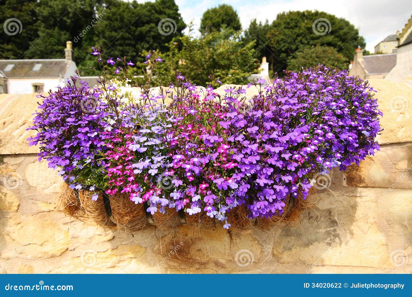 Beautiful flowers basket 3280986 spojivachfo filgiftshop free shipping send flowers and gifts izmirmasajfo