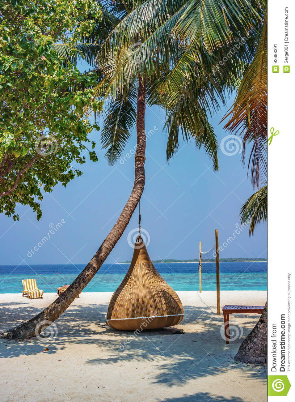 Hanging Chair Under The Palm Tree On A Beach At Maldives