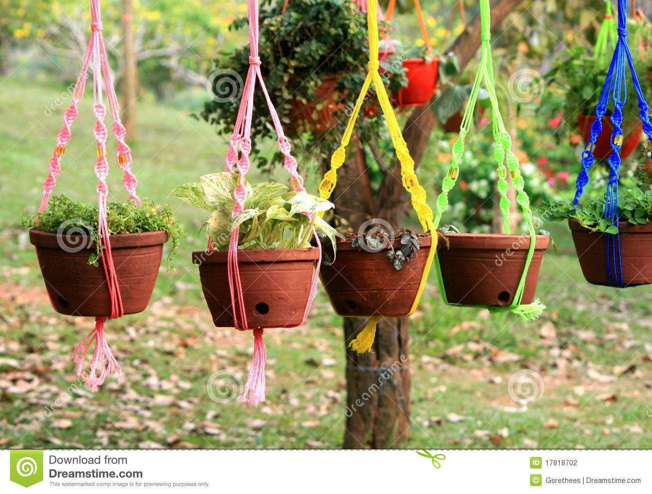 Hanging flower pots stock photo image of planting object for Hanging flower pots ideas