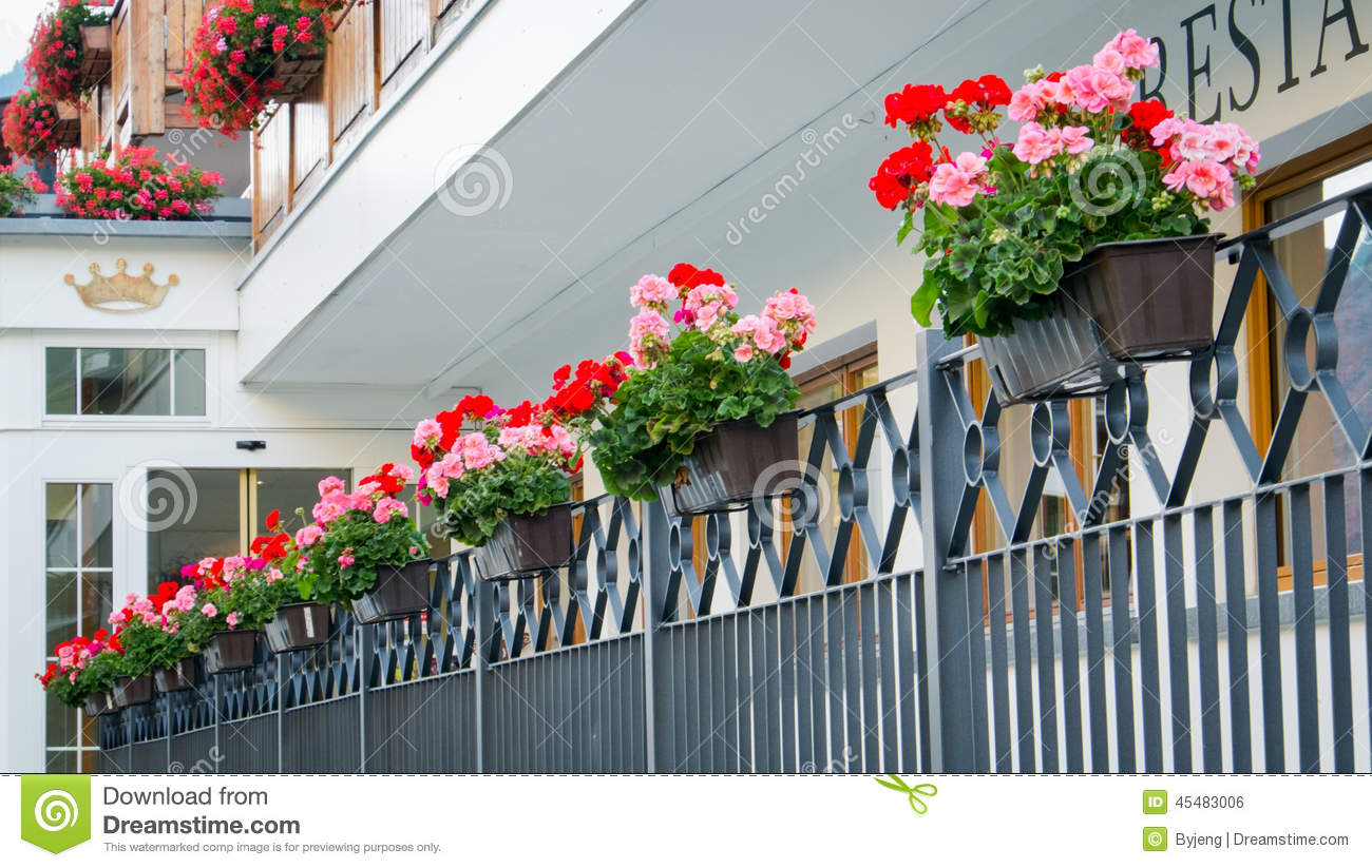 Hanging flower pots stock photo image 45483006 - Flower pots to hang on fence ...