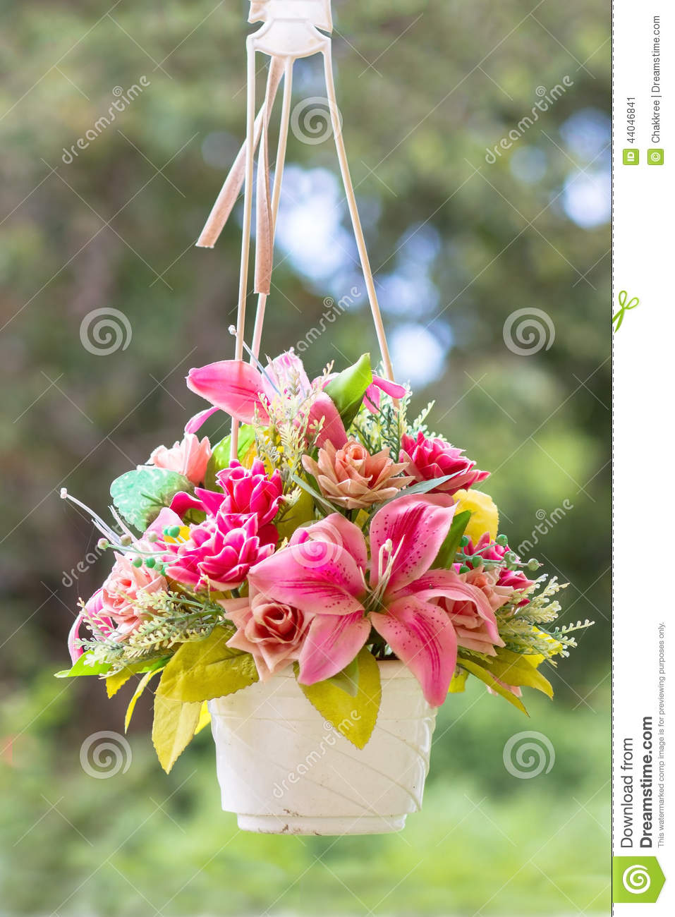 hanging flower vase and buty stock image image of bloom blooming