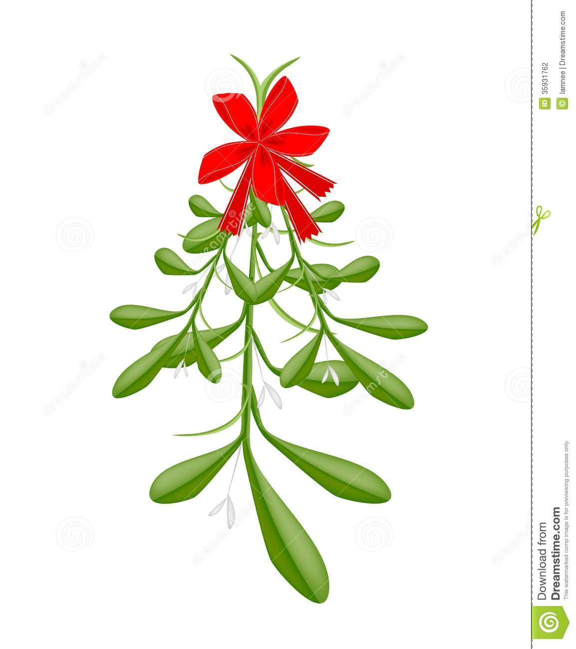 Hanging Lovely Green Mistletoe With A Red Bow Stock Photography ...