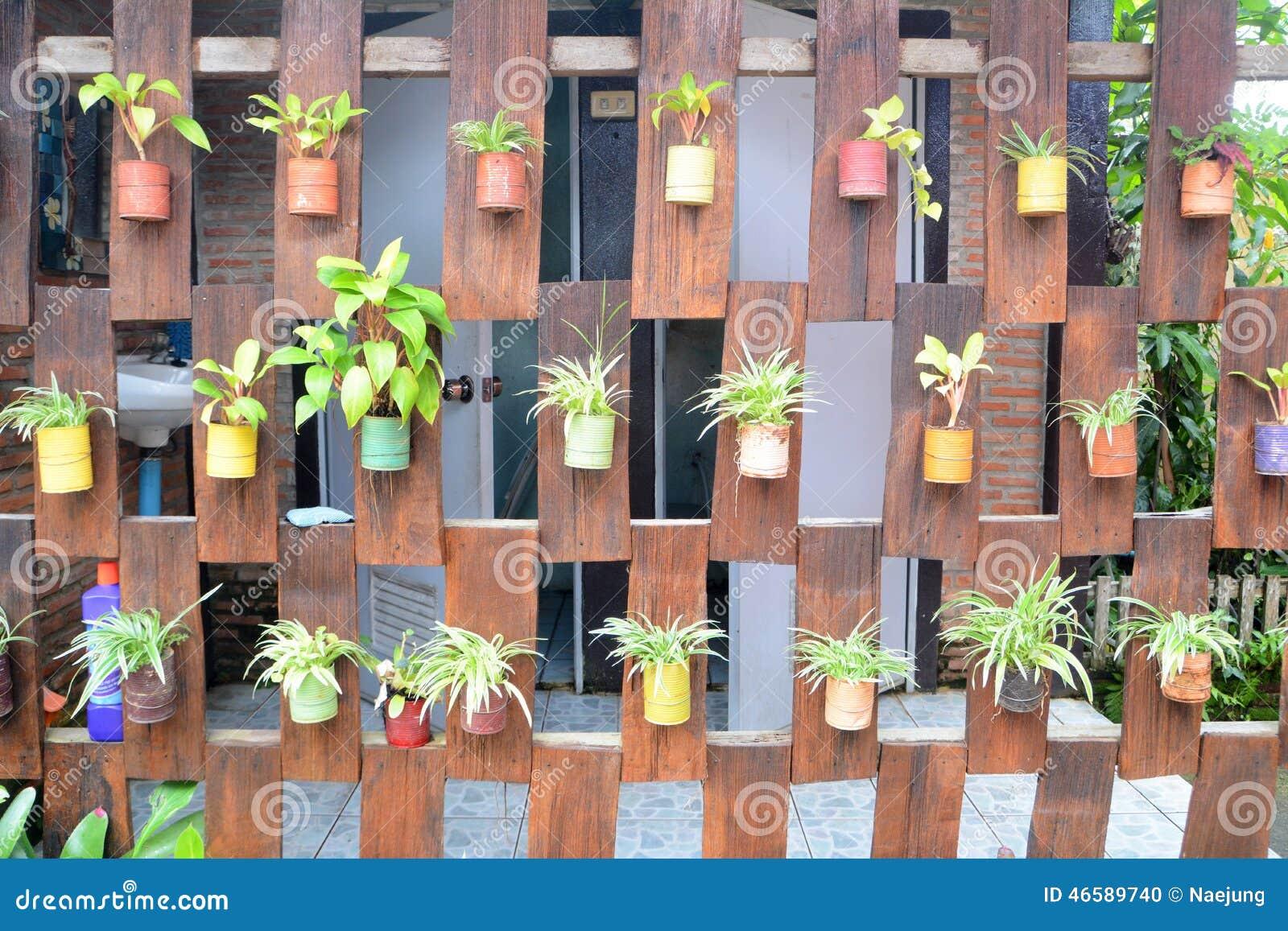 Hanging Plants Stock Photo Image 46589740