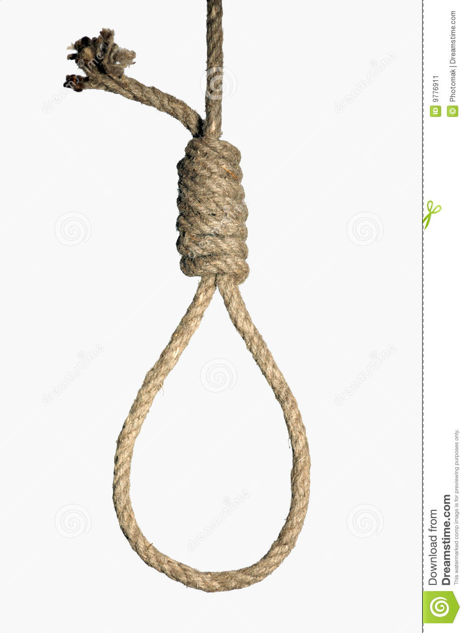 Hangman's Noose On White Background Stock Image - Image: 9776911