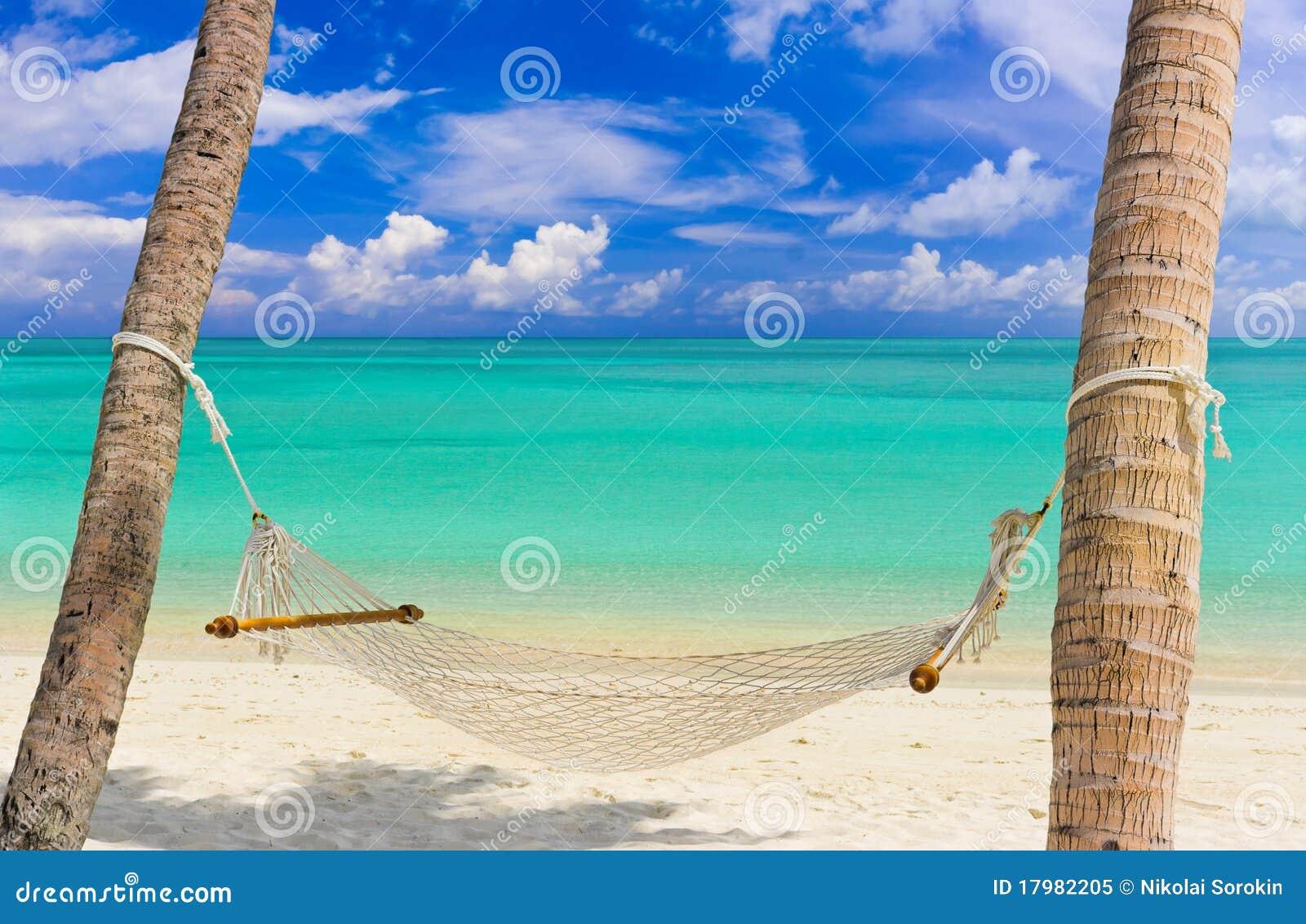 Hangmat op een tropisch strand