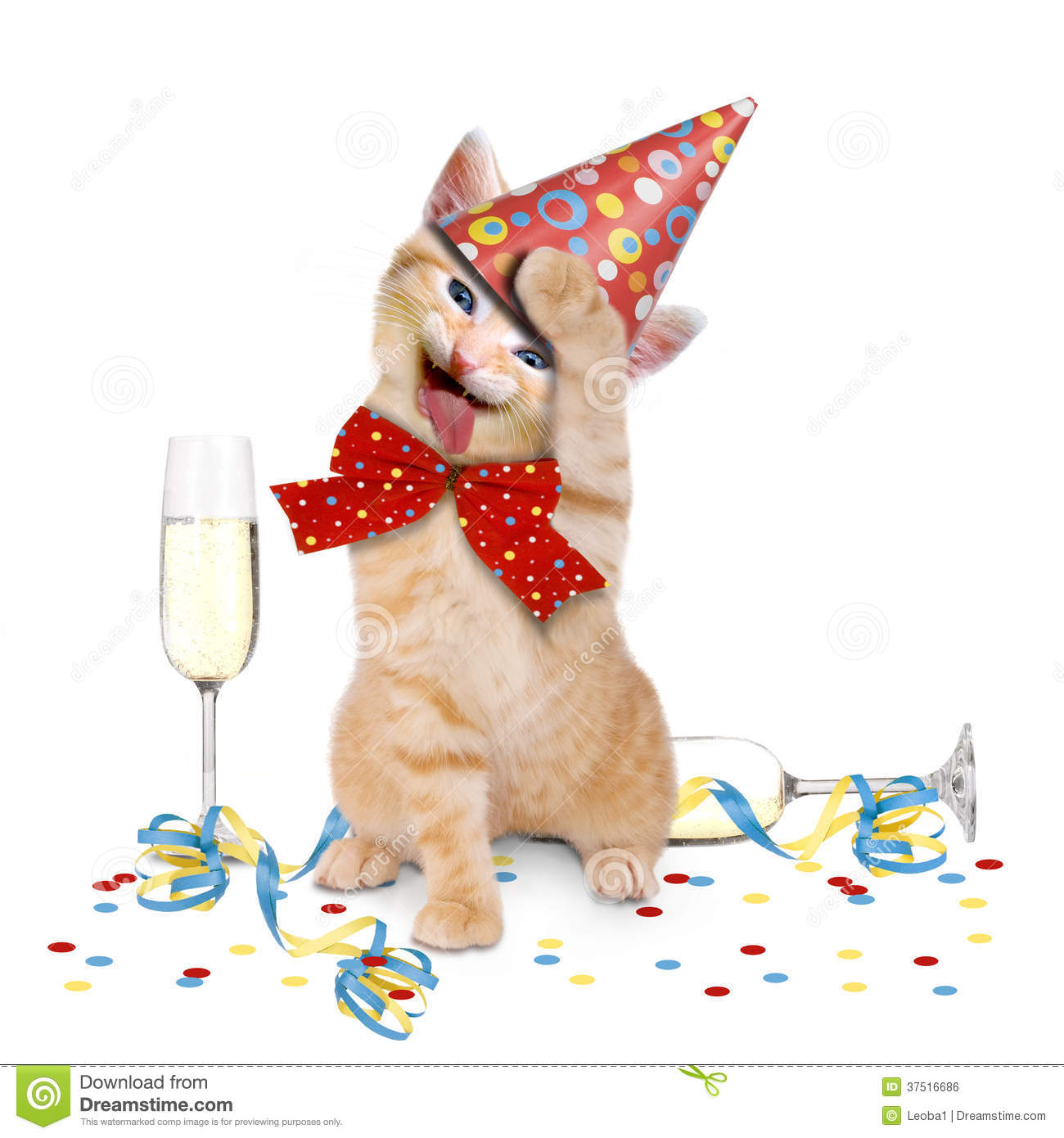hangover  cat after party stock photo image of headache free clip art cats and dogs free clip art cats away the mice will play