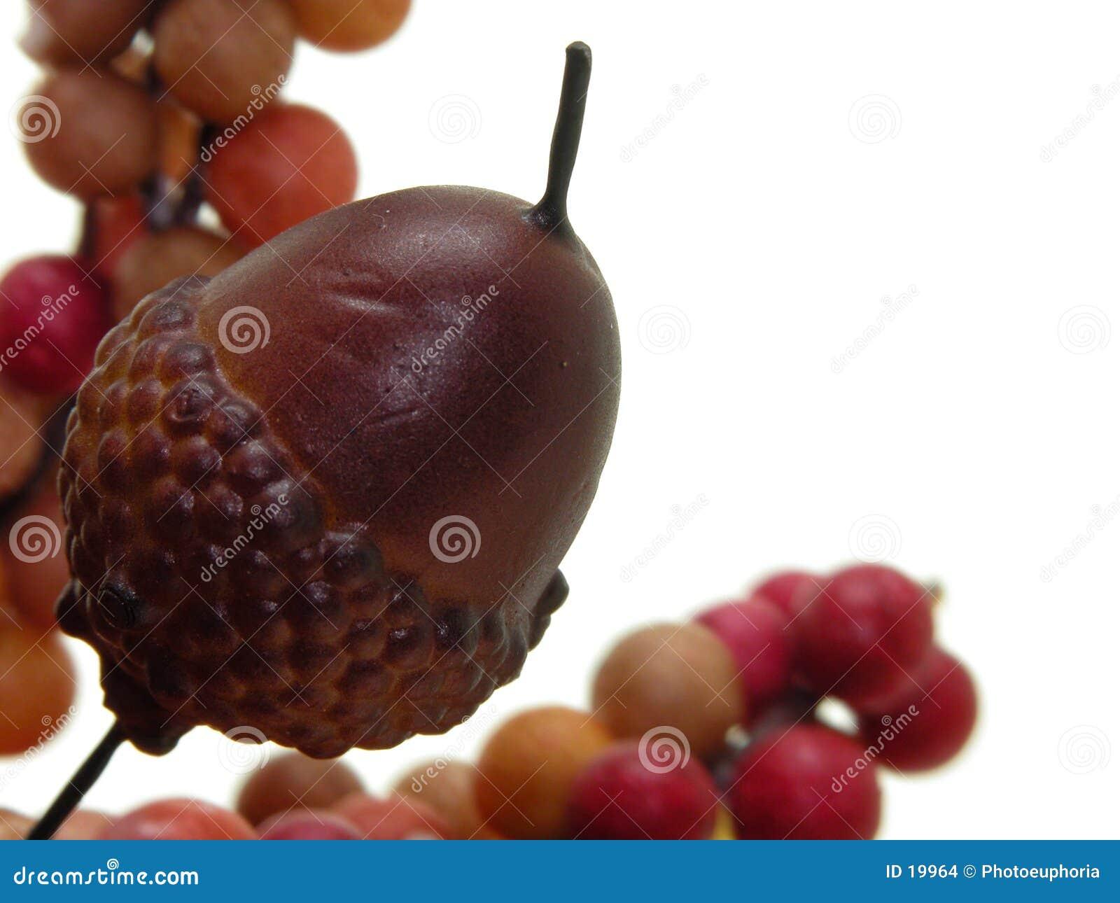 Hantverk för ekollonkonstbär