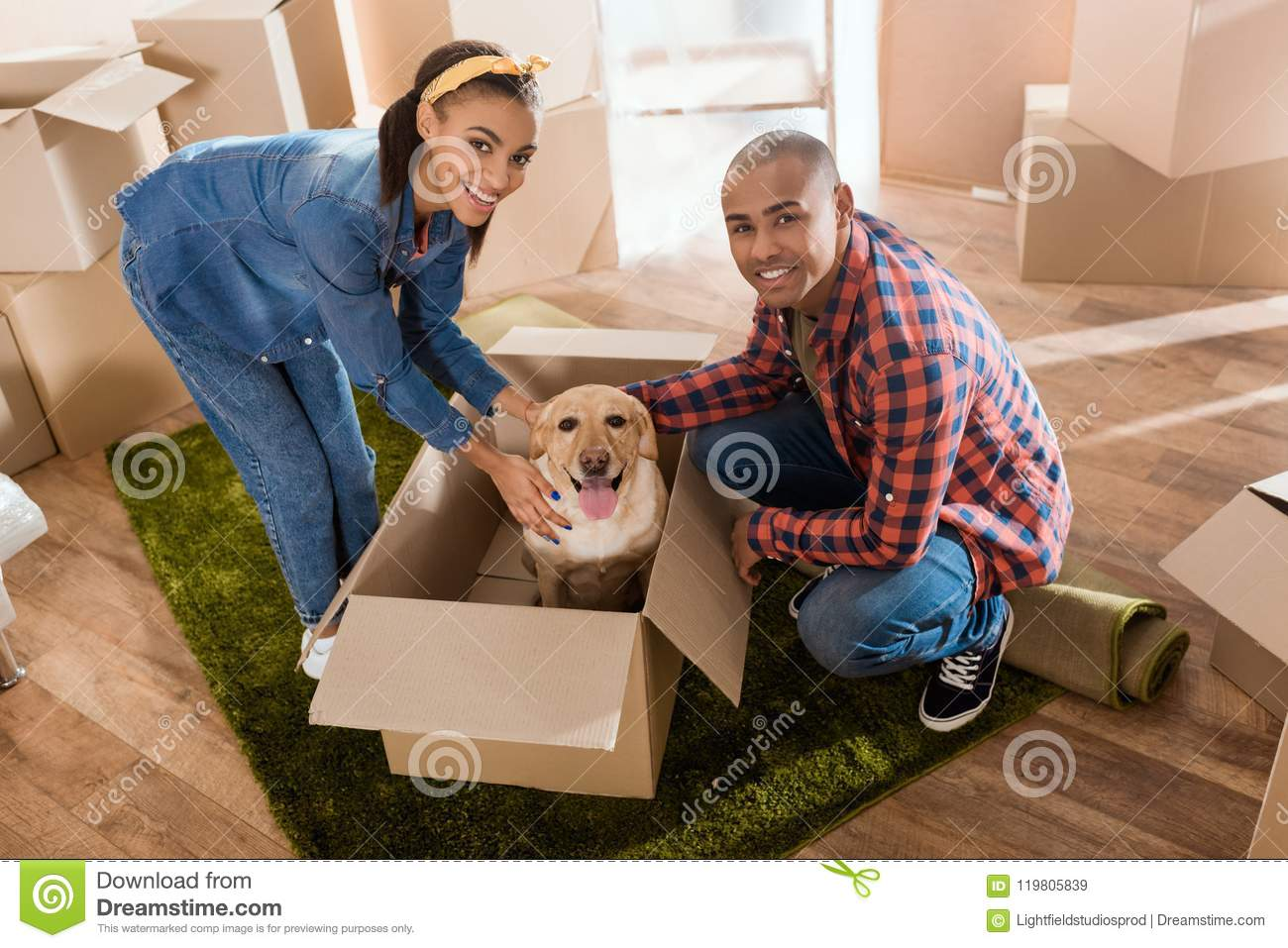 happy african american couple with labrador dog in cardboard box moving to