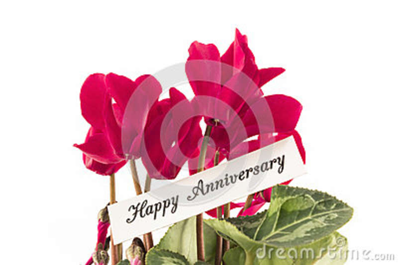 Happy Anniversary Card with Bouquet of Cyclamens