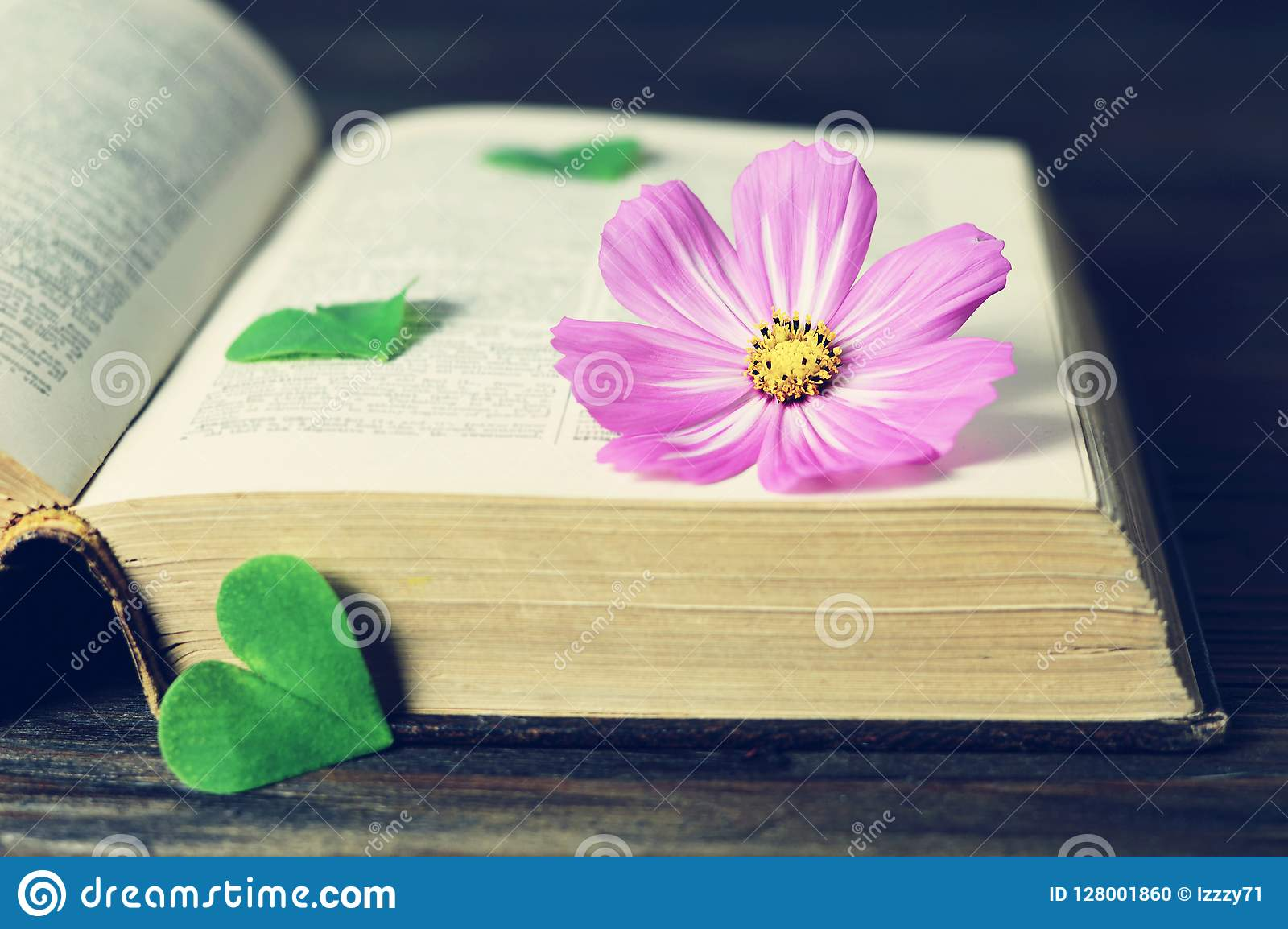 Happy Anniversary card with cosmos flower and vintage book