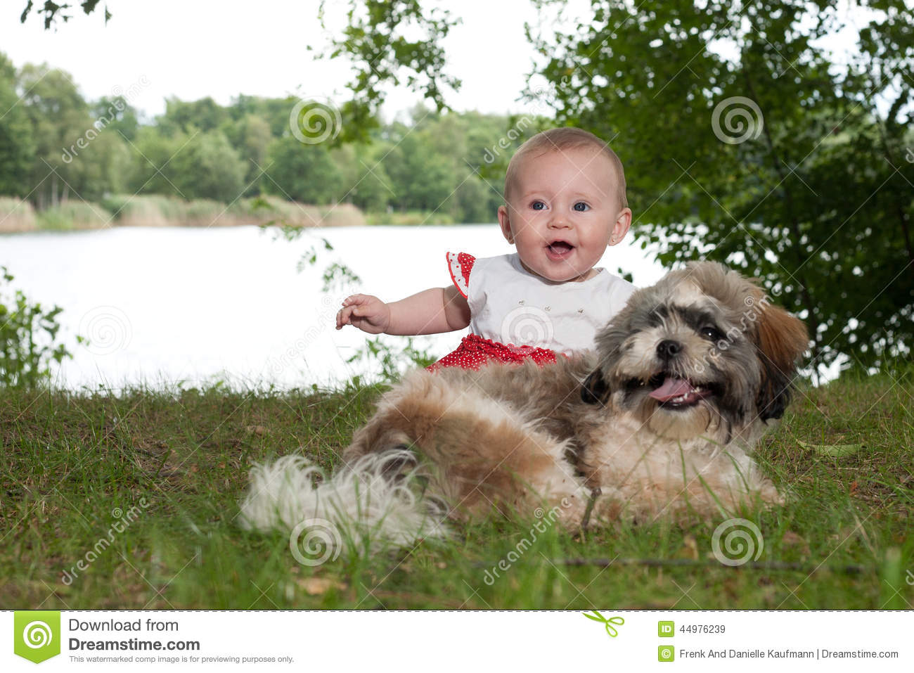 happy baby and puppy near the lake stock image image of cheerful