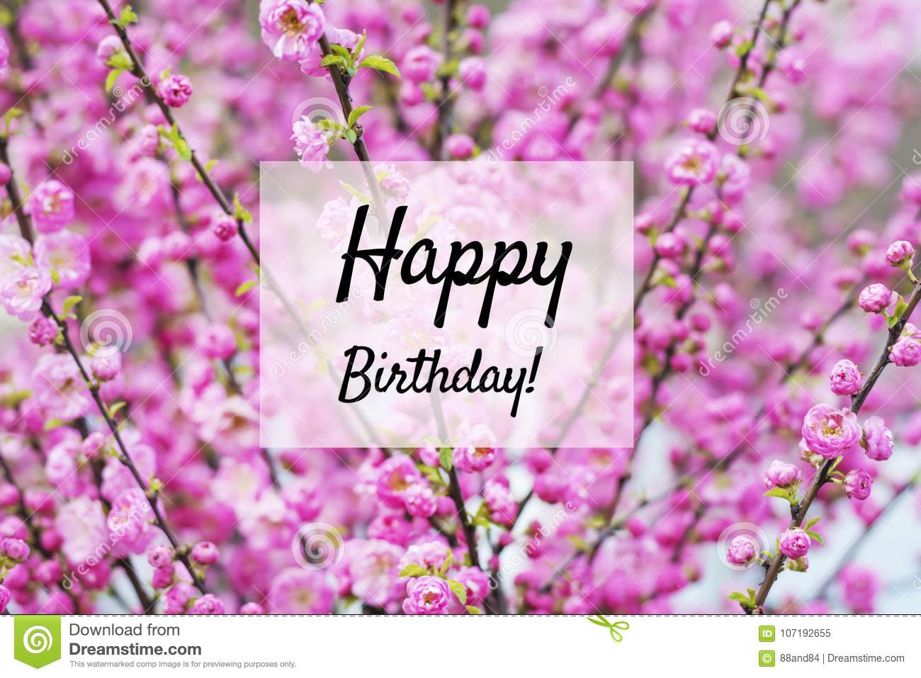 happy birthday card with flowers background - Happy Birthday Cards Flowers