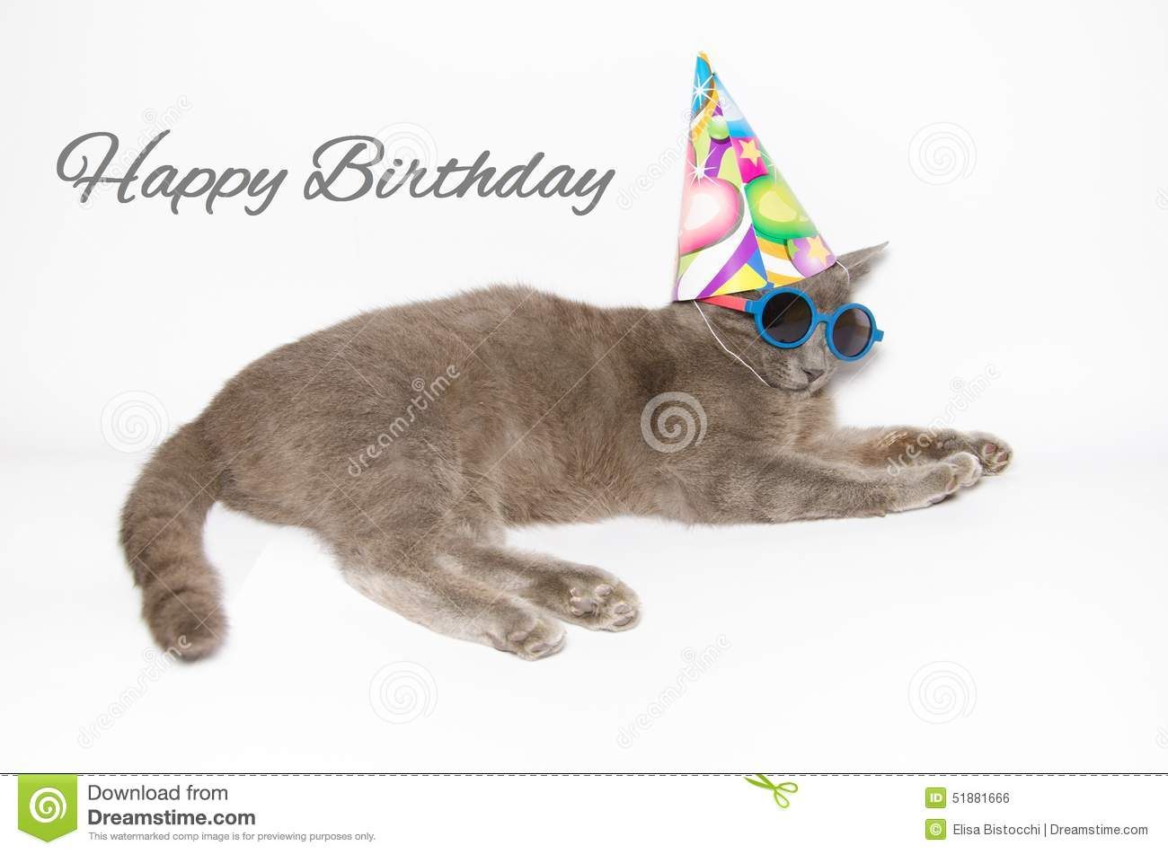 Funny birthday card stock vector illustration of cute 24603005 happy birthday card with funny cat royalty free stock image bookmarktalkfo Images