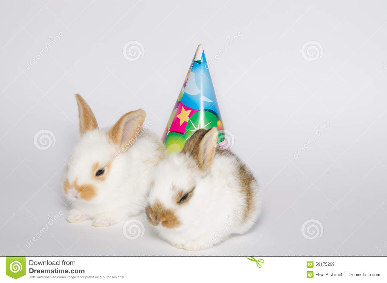 Happy Birthday Card With Party Rabbits