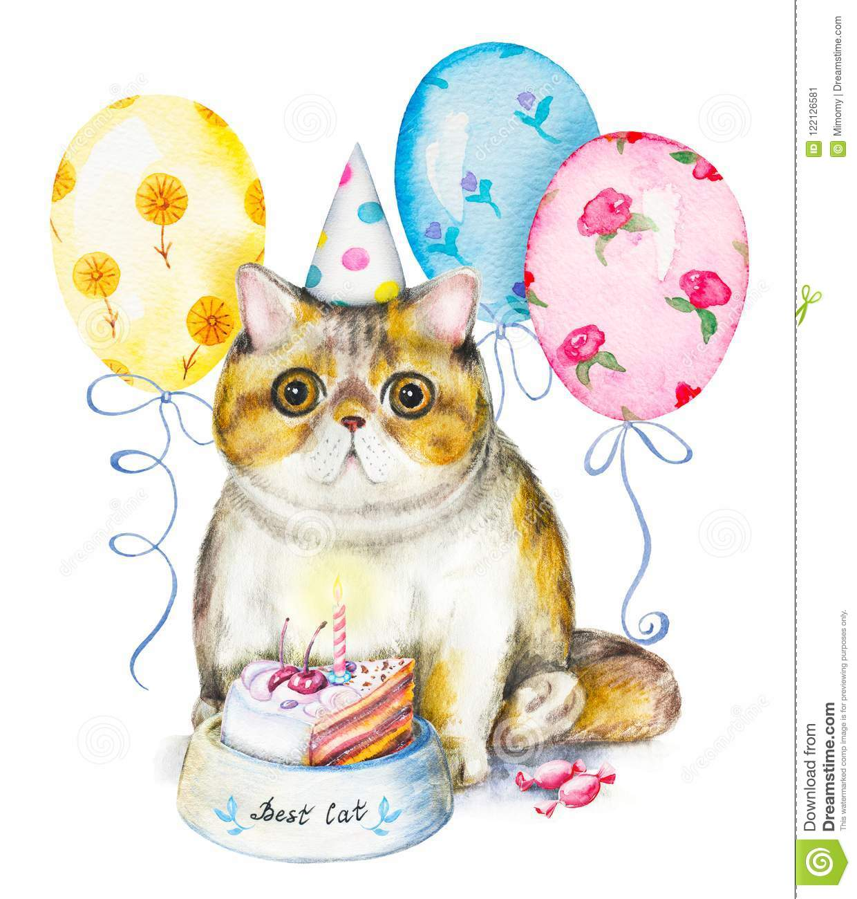 Happy Birthday Card With Xotic Cat In Cap Bowl With Cake Candi